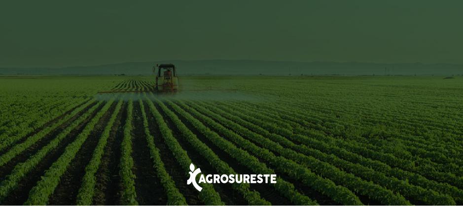 ett agrosureste campo 4 OPC2